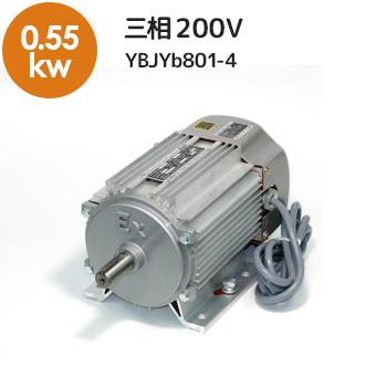 防爆三相モーターYBJYb801-4メイン
