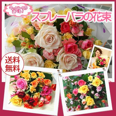 スプレーバラ バラ花束 送料無料  誕生日にバラ バラ農園より直送薔薇 ラッピングが選べるミニバラ花束 女性がうれしい花 結婚記念日,