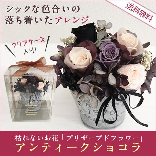 アンティーク ショコラ 枯れないお花 そのまま飾れるプリザーブドフラワー