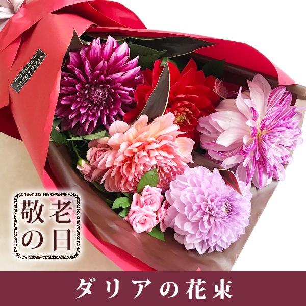 【送料無料】 ダリア花束