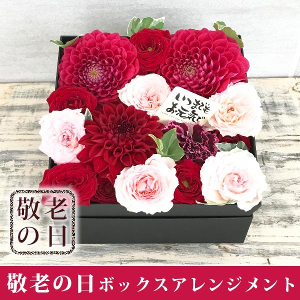 【送料無料】 ダリアとバラのボックスフラワーアレンジメント(レッドダリア)