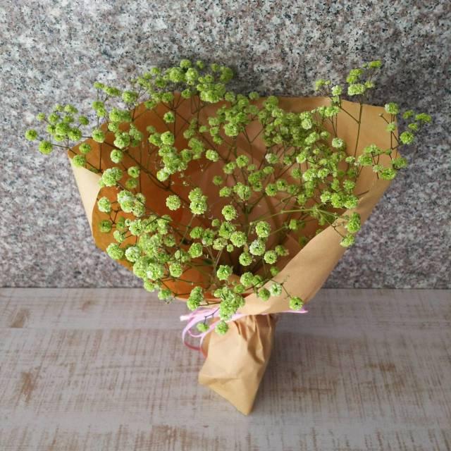 花束<カスミソウ・緑>