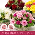 【送料無料】バララウンドアレンジメント 誕生日・歓送迎 お見舞い 結婚 記念日 結婚祝 出産祝  バレンタインギフト 母の日にも