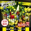 【送料無料】阪神タイガース花束 8,000円タイガース承認ラッピングで花ギフト寅キチさん感激です 誕生日 送別会 記念日に 父の日ギフトに