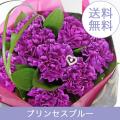 母の日 送料無料 ムーンダストカーネーション花束 母の日にお母さんの幸せを願う青いカーネーション「プリンセスブルー」