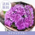 母の日 送料無料 ムーンダストカーネーション花束  母の日にお母さんの幸せを願う青いカーネーション「ライラックブルー」