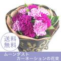 母の日 赤薔薇とムーンダストカーネーション花束  おしゃれな青紫色のカーネーション 母の日バラとカーネーション