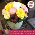 送料無料 トルコギキョウ&バラ アレンジメント お誕生日 敬老の日 アンティークプランターアレンジ