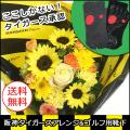 【送料無料】阪神タイガースアレンジメント ゴルフ用靴下セット