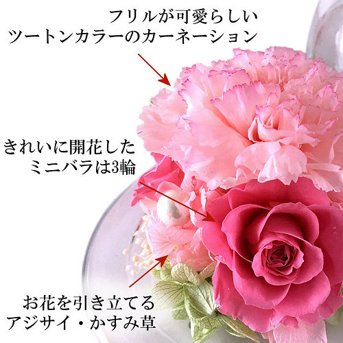 グラスドーム(ピンク)02