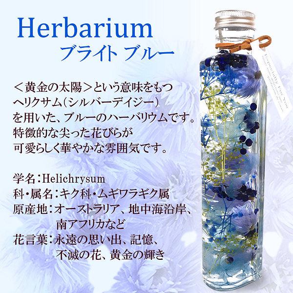 ハーバリウム(ブライトブルー)02