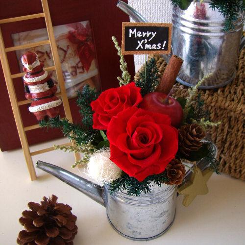 ローズポットクリスマス(レッド)