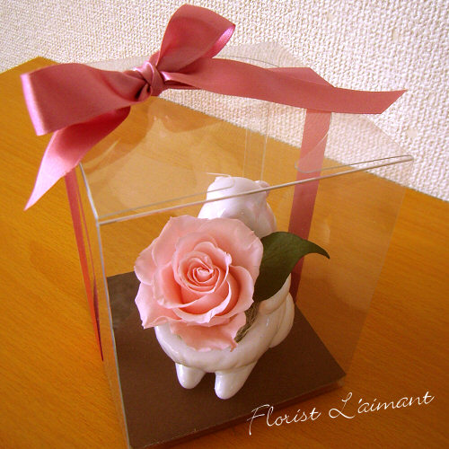 スマイルチッピー(ピンク)【プリザーブドフラワー】