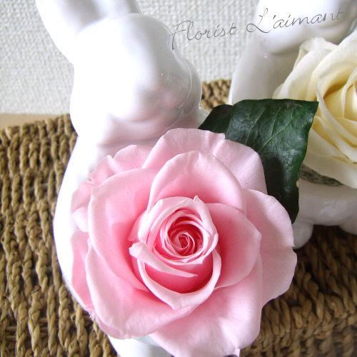 サンクスラビット(ピンク)【プリザーブドフラワー】