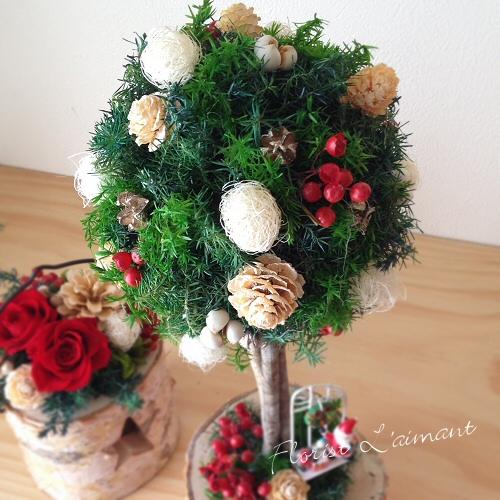 クリスマストピアリー03
