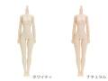 【26BD-F01】26cmオビツボディ バストサイズM
