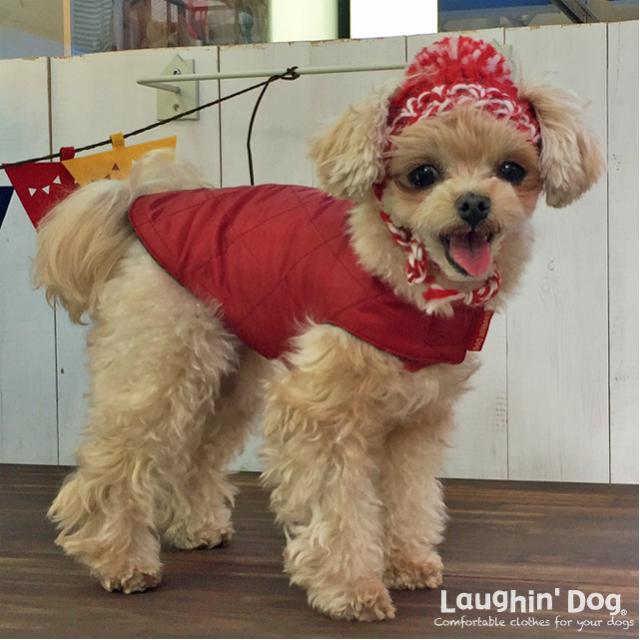 Laughin' Dog ラフィンドッグ 2ステップで着脱簡単。キルトジャケット 小型犬サイズ
