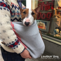 Laughin' Dog ラフィンドッグ 中型犬用カンガルーキャリーバッグ