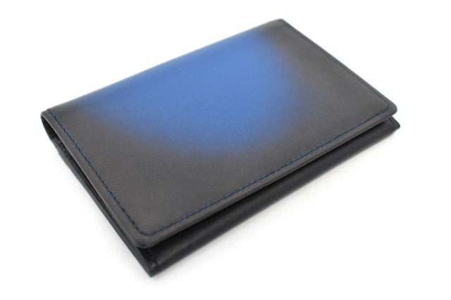 Gradation(グラデーション) パスケース 「プレリーギンザ」 NP79310 ブルー 正面