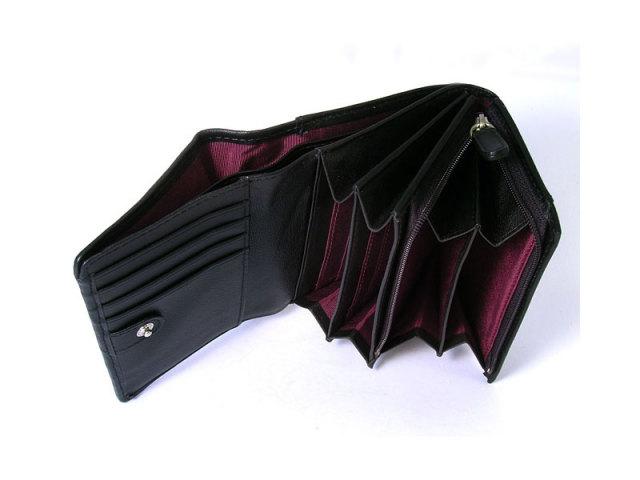 印伝 トンボ柄 二つ折り財布(小銭入れあり) 「ル・プレリー 」  NPE5210 クロ/アカ 特徴