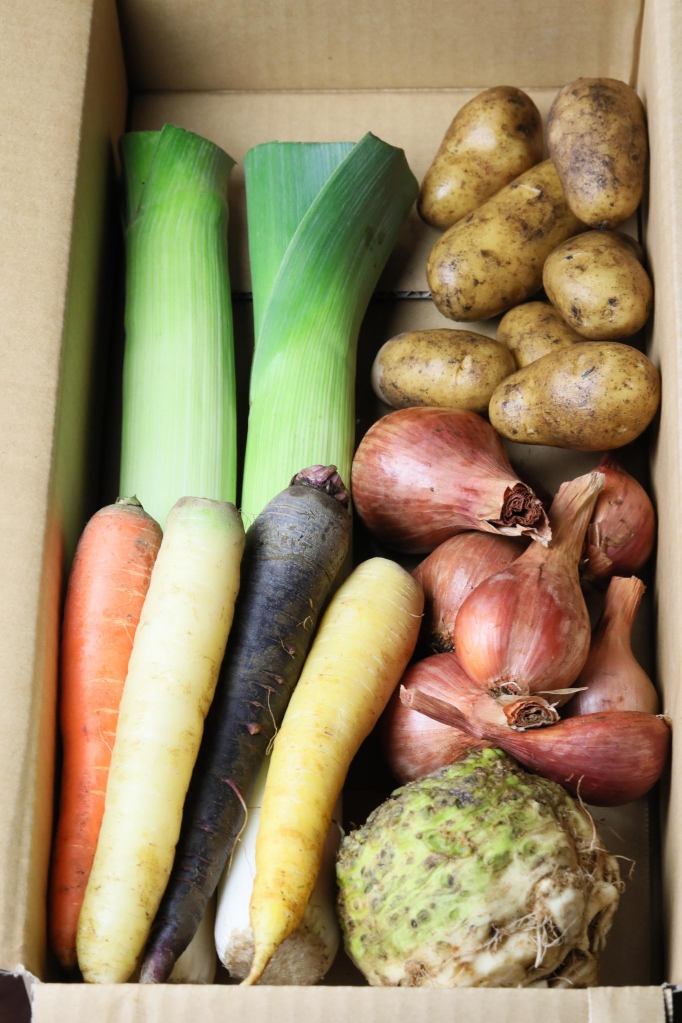 【西洋野菜セット】 ポワロー、根セロリ、カラー人参、エシャロット、熟成メークイン