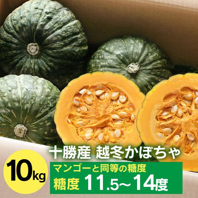 中橋農場 かぼちゃ10kg