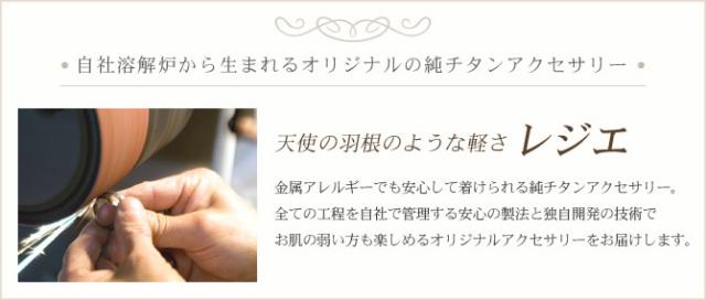 【チタンアクセサリー レジエ】ペアネックレス