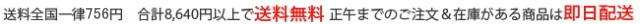 【チタンアクセサリー レジエ】8,640円以上送料無料