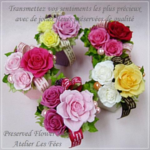 プティ・フルール * Petite Fleurs * クリアケース付き