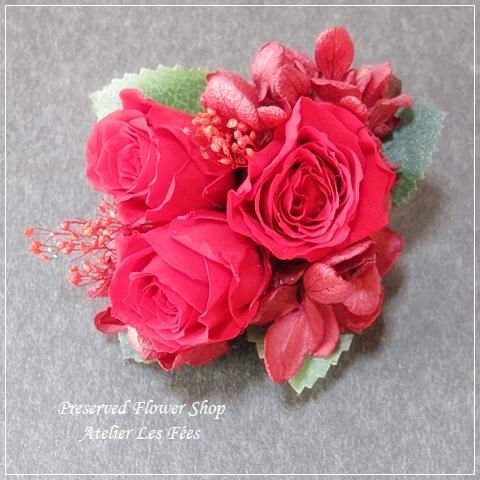 Petit Rouge