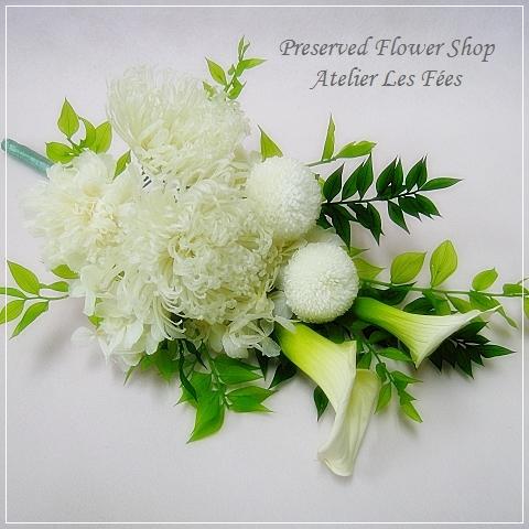 Memoire Blanc
