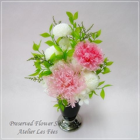 Memoire Rose