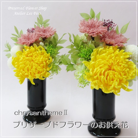ChrysanthemeⅡ