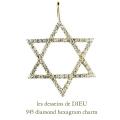 レデッサンドゥデュー 945 ダイヤモンド ヘキサグラム ロクボウセイ チャーム 18金,les desseins de DIEU Diamond Hexagram Charm K18