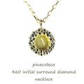 ピナコテーカ 460 イニシャル ダイヤモンド サークル 華奢ネックレス 18金,pinacoteca Initial Diamond Necklace K18