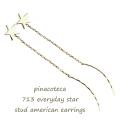 ピナコテーカ 713 エブリデイ スター スタッド アメリカン ピアス 18金,pinacoteca Everyday Star Stud American Earrings K18