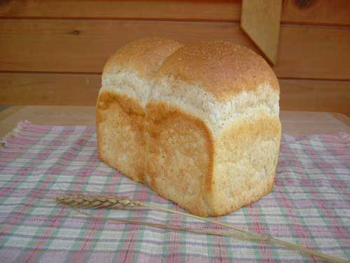 天然酵母全粒粉食パン