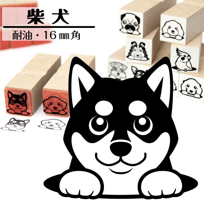 柴犬 イラストゴム印【16mm】犬のイラストはんこ GA-03