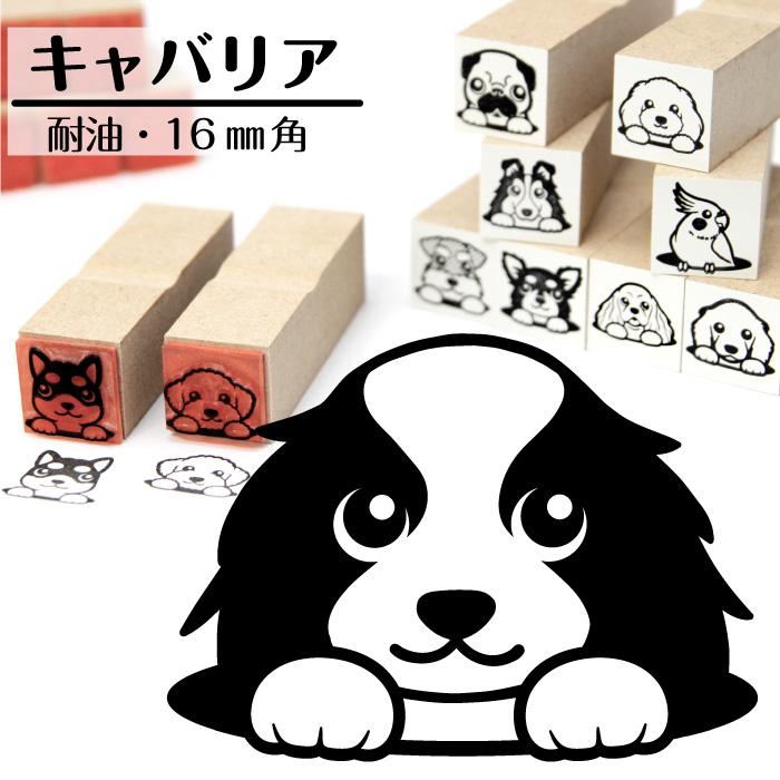 キャバリア イラストゴム印【16mm】犬のイラストはんこ GA-11