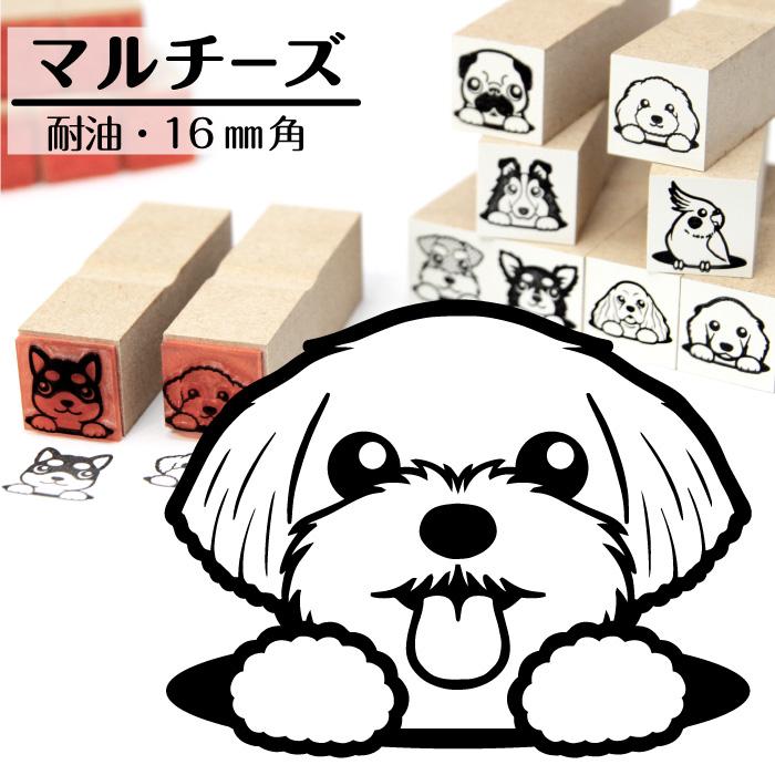 マルチーズ イラストゴム印【16mm】犬のイラストはんこ GA-27