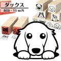 ミニチュアダックス イラストゴム印【16mm】犬のイラストはんこ