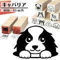 キャバリア イラストゴム印【16mm】犬のイラストはんこ