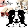 ボーダーコリー イラストゴム印【16mm】犬のイラストはんこ GA-15