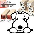 ワイヤーフォックステリア イラストゴム印【16mm】犬のイラストはんこ