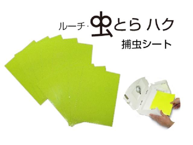 【新商品・即納】 Luci/ルーチ LEDデザイン捕虫器 虫とらハク(LMT-BB-B-A-N)用捕虫シート ☆ルーチ・虫とらハク用捕虫シート☆ LMT-S-C(10枚入り)