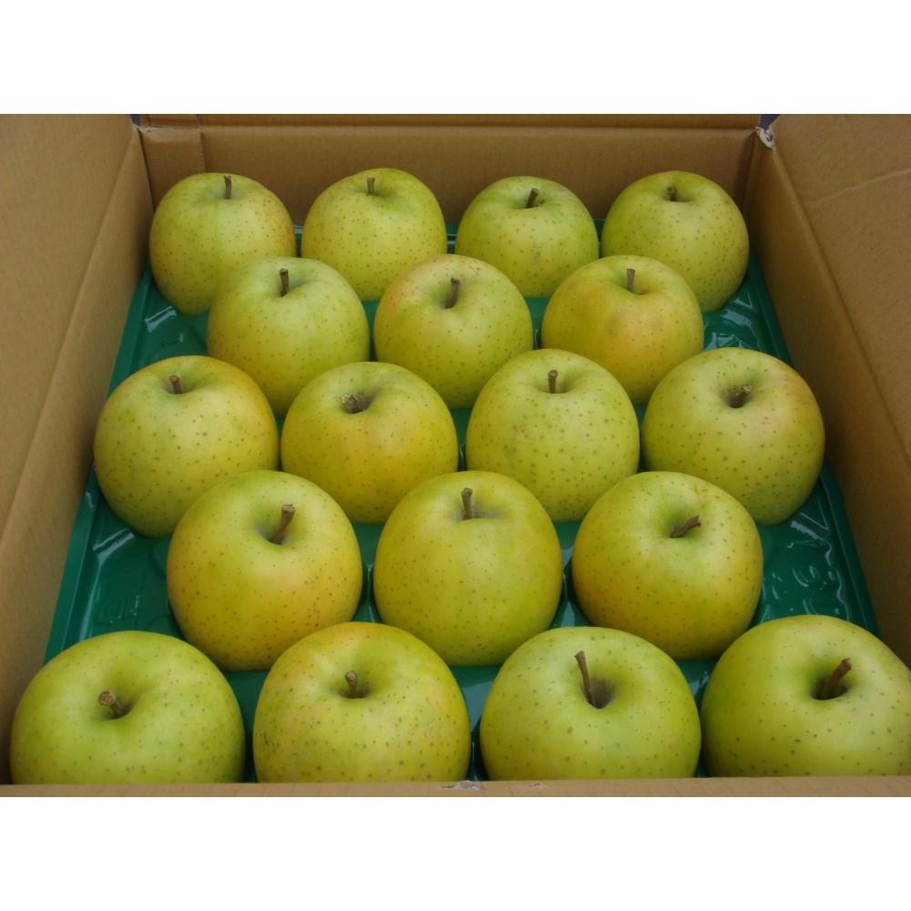 【リマ特選産直品】 竹嶋さんのりんご サン・王林 5kg【一段詰】(約18玉~20玉)