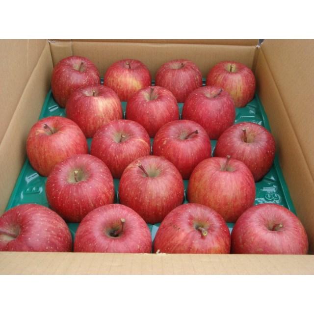 【リマ特選産直品】 竹嶋さんのりんご サン・ふじ 約5kg【一段詰】(約18玉~20玉)