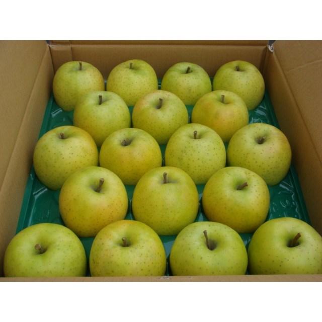 【リマ特選産直品】 竹嶋さんのりんご サン・王林 約5kg【一段詰】(約18玉~20玉)