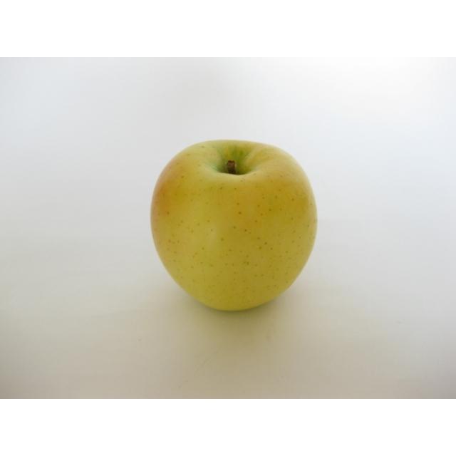 【リマ特選産直品】★期間限定★竹嶋さんのりんご サン・黄王(きおう) 5kg【一段詰】(約18玉~20玉)