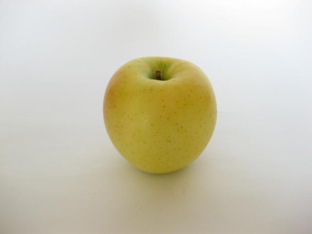 【リマ特選産直品】 竹嶋さんのりんご サン・黄王(きおう) 5kg(約18玉~20玉)
